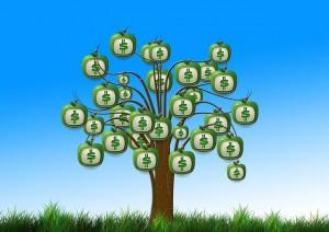 Das Geld vom Treiberbaum pflücken Quelle: pixabay.com