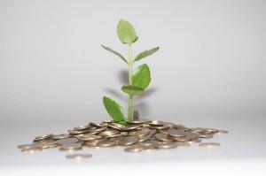 Das meiste aus dem Geld rausholen Quell: pixabay.com